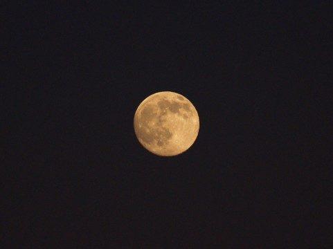 満月、新月