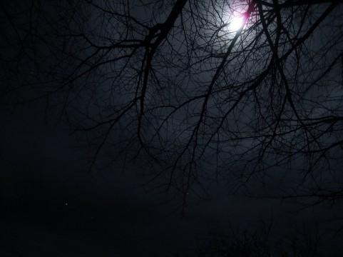 今日は山羊座の新月(15:53)