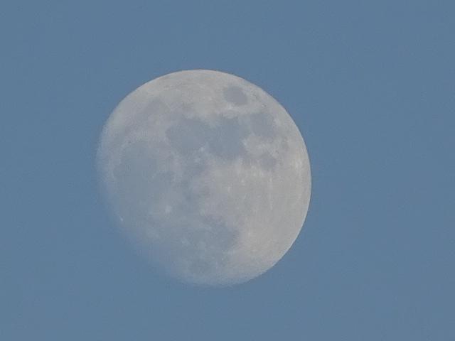 どうやら昨日は満月だったみたい。ショック