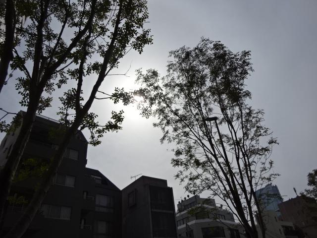 図解人生がはかどる「ふせんノート」by坂下仁【欲しい】
