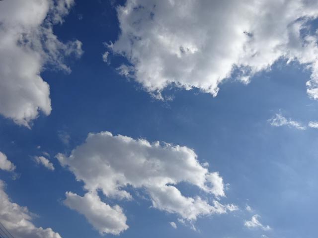 空は青い【今日の一枚】