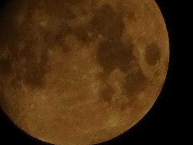 だいぶ満月に近づく月【今日の一枚】