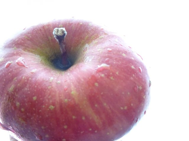 リンゴ 変なカタチ。【今日の一枚】