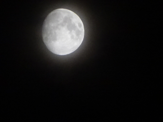月が滲む でもきれいに撮れるって素敵【今日の一枚】
