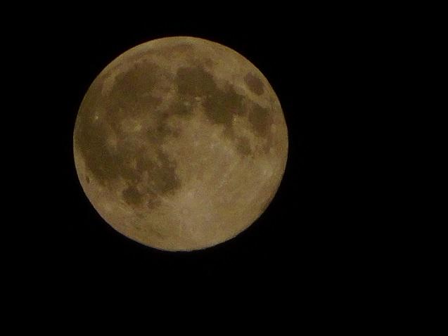 赤いような月