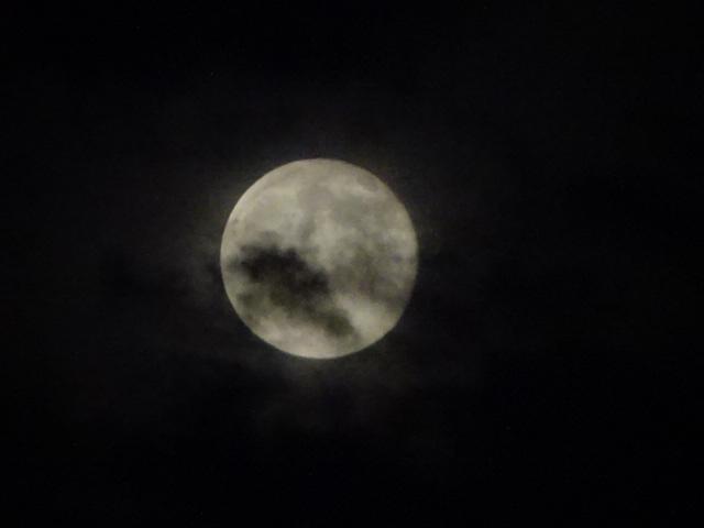風流かもしれない月