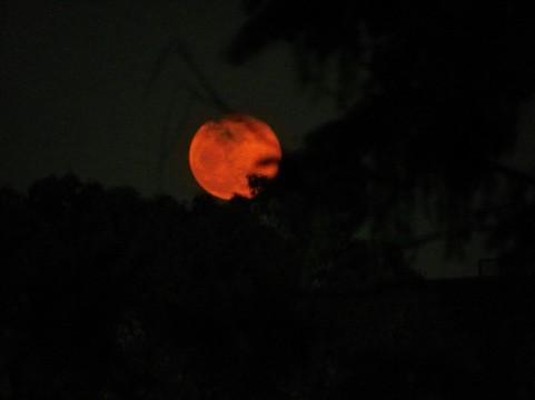 6月の満月はストロベリームーン!?今日は射手座の満月(22:09)