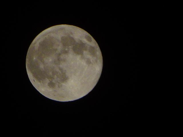 満月だった、昨日も今日も丸い月だった。今日は山羊座の満月★
