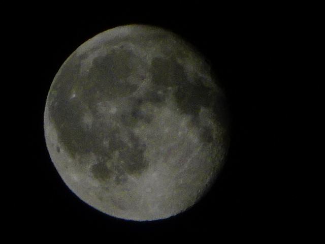 満月は人類共通の話題かもと気づかされた
