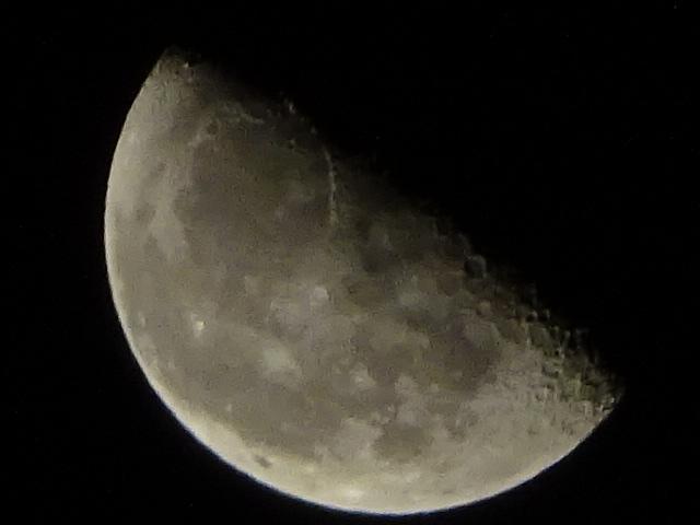 下弦の月は明日のようですが、今日もだいぶハーフムーンですよ【今日の月】