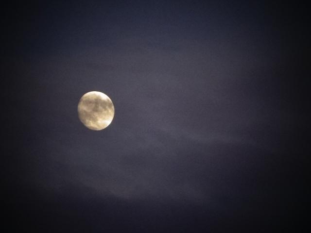 明日は中秋の名月だけど、満月ではないのだ。【今日の月】
