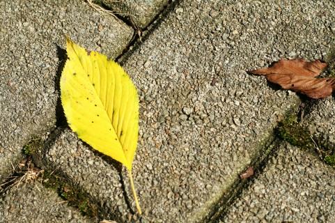 TOEIC前日、大丈夫かな、台風~過去の自分と対話する【10月21日】