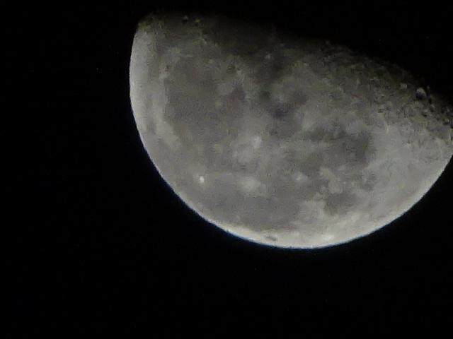 突然の寒さに、変わらず月がキレイ【今日の月】