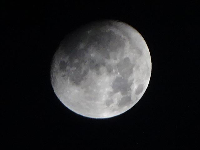 すぐに隠れてしまう月【今日の月】