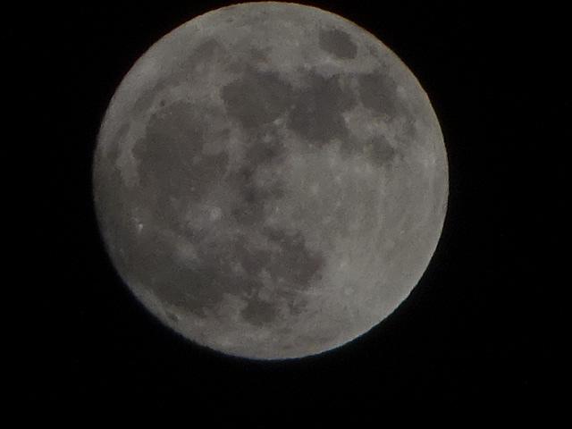 帰り道に、巨大な月。でかい。