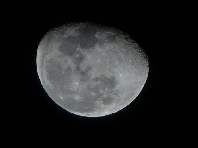 月の模様が綺麗に撮れて嬉しい夜です。