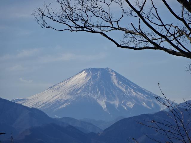 高尾山 健康登山 行ってきた