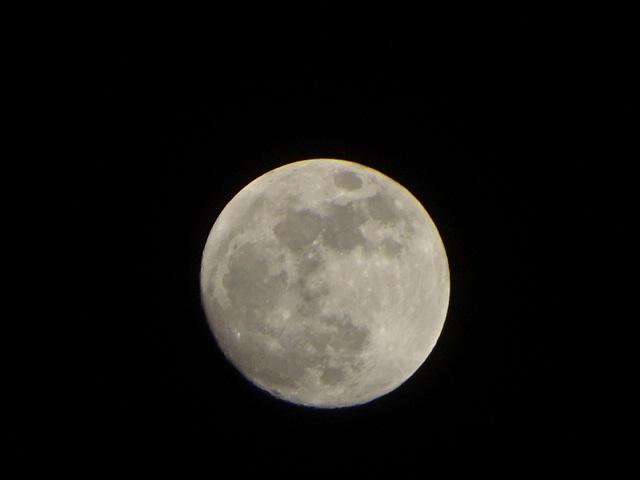 満月間際の月も丸い。