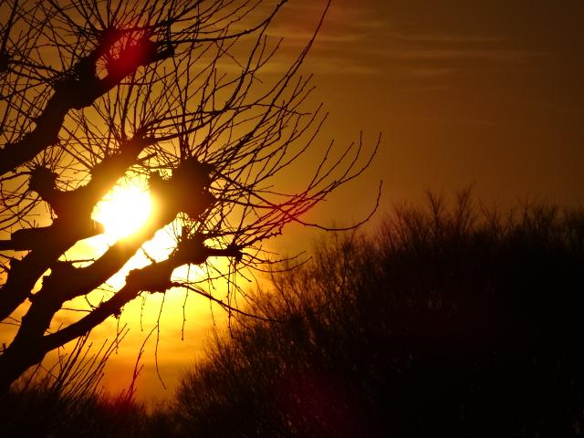 歩道橋の上から夕焼け【今日の一枚】