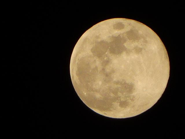 月の綺麗な夜だ。満月。次のブルームーンは、2年半後だってよ。