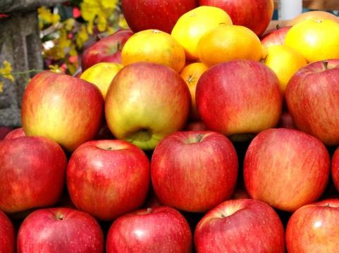りんごは丸かじり派です、わたし。