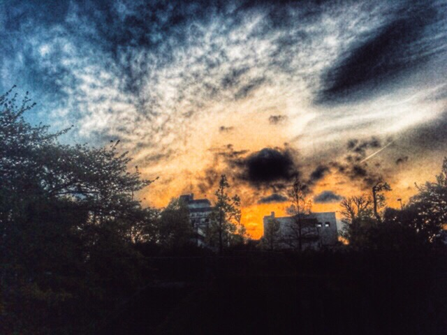 青春の夕日には、ちょっぴり遠い夕暮れの風景  今日の一枚