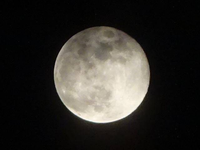 満月だった。