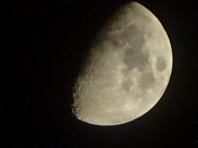 今日も月が綺麗な夜です。【今日の月】