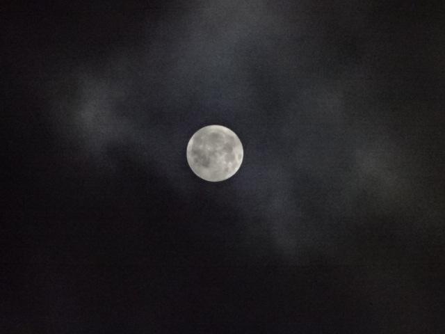 今日の月 満月に一番近い? 雲の晴れ間から。