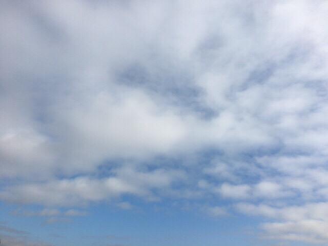 朝の空。今日の空を記しておこう。