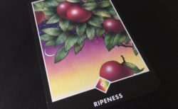 RIPENESS 熟すこと@OSHO 禅タロットで潜在意識と対話する。