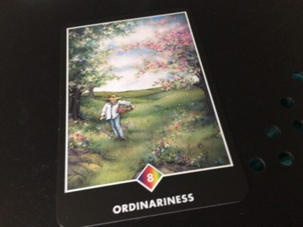 ORDINARINESS 普通であること:日常生活が大切!@OSHO 禅タロットで潜在意識と対話する。
