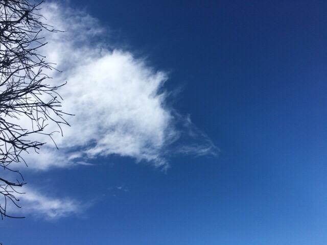 今日の空を記しておこう。2019Jan26 青空と白い雲の対比がキレイ