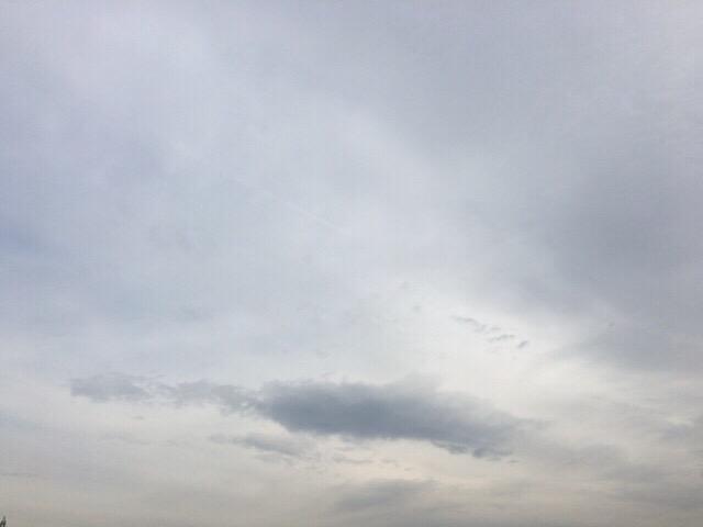 今日の空を記しておこう。2019Jan28 曇り空も好きなんだ。