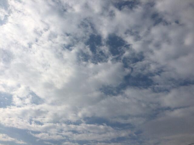 今日の空を記しておこう。2019Feb05