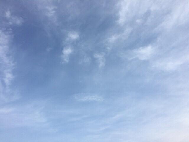 今日の空を記しておこう。2019Feb07