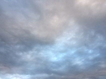 今日の空を記しておこう。2019Feb12