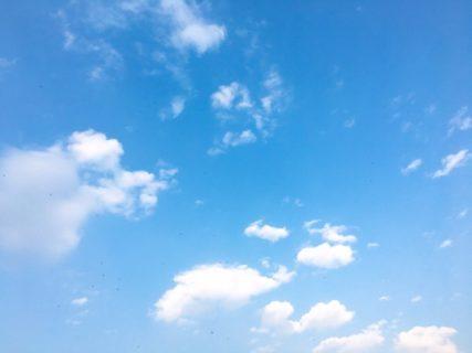 今日の空を記しておこう。2019Feb26