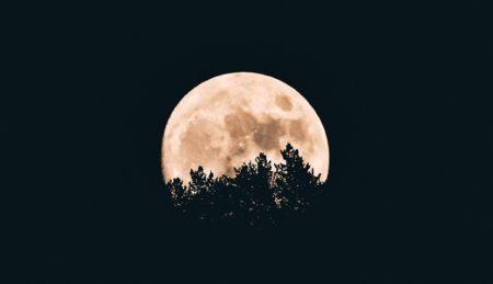 今日(2月5日)は、水瓶座の新月(6:04)