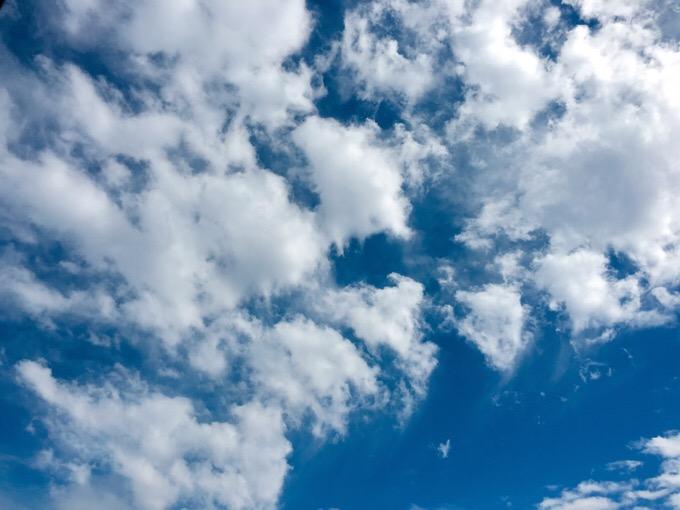 今日の空を記しておこう。2019Mar11