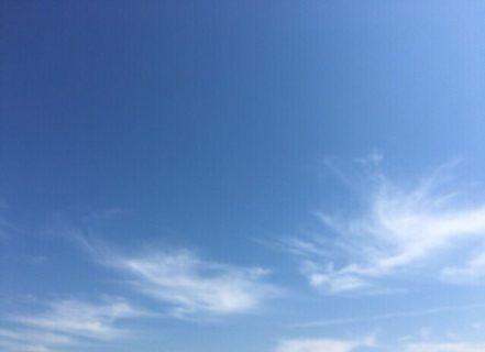 今日の空を記しておこう。2019Apr16