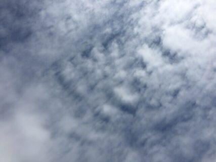 今日の空を記しておこう。2019Apr29 昭和の日