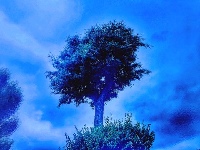 青い写真を作りたくて、やりすぎ画像加工再び【今日の一枚】iPhone/Snapseed/モザイク