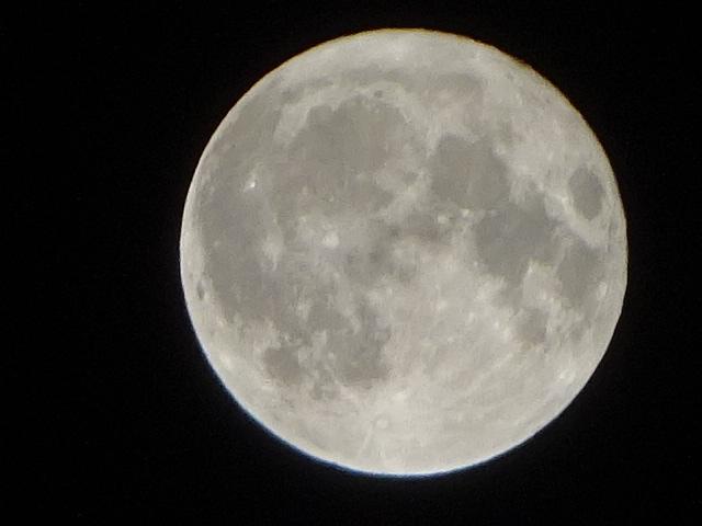 月の綺麗な夜でした。
