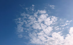 今日の空を記しておこう。2019Nov15