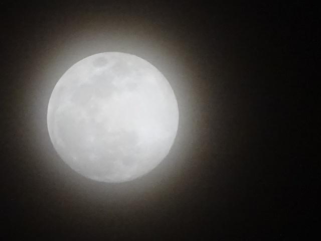 今日はおうし座満月 ビーバームーンってなんだ?
