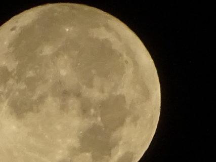 12月12日はふたご座の満月(14:12) 朝の月はまんまるだったよ。