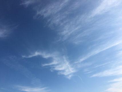 今日の空を記しておこう。2020Mar03