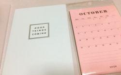 来年の手帳はカレンダーシールで練習中。イマドキの百均ってすごい。