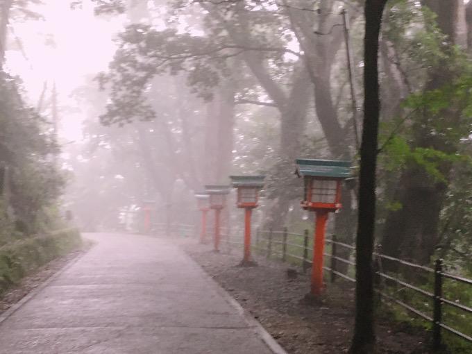 雨の高尾山@東京 霧に煙る緑の風景【御朱印帳めぐり】
